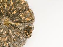 Pumpkin on white. Stock Image