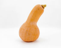 Pumpkin on white, isolated Stock Images