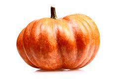 Pumpkin  on white Royalty Free Stock Photo