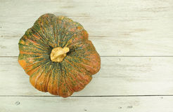 Pumpkin on white wooden board. Royalty Free Stock Photography