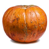 Pumpkin Whole Fall Symbol Royalty Free Stock Image