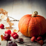 Pumpkin with wild apples, chestnuts and leaves. Halloween, autumn background. Stock Photos