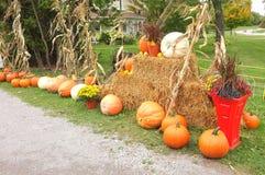 Pumpkin Winter Squash Hay Bale Stock Photo