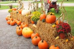 Pumpkin Winter Squash Hay Bale Royalty Free Stock Image