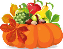 Free Pumpkin With Autumn Leaves - Vector Illustration Royalty Free Stock Photos - 60736038