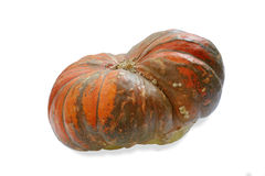 Pumpkin on the withe background in study Stock Photo
