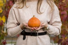 Pumpkin in woman hand out door royalty free stock photos