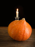 Pumpkin on wood Stock Image