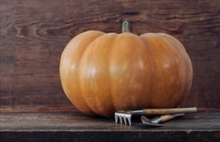 Pumpkin on the wooden background Stock Image