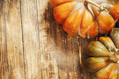 Pumpkin on wooden background. autumn still life of pumpkin on a brown wooden floor. pumpkin close-up shot from the top point royalty free stock images