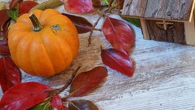 Pumpkin, wooden cabin and autumn leaves on old wooden background. Vibrant orange pumpkin, colorful autumn leaves and small wooden cabin on wooden background Stock Photos
