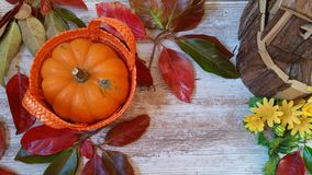 Pumpkin, wooden cabin and autumn leaves on old wooden background. Vibrant orange pumpkin, colorful autumn leaves and small wooden cabin on wooden background Royalty Free Stock Image