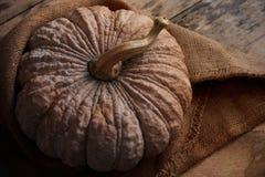 Pumpkin on wooden floor. Royalty Free Stock Photo