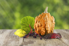 Pumpkin on wooden table Royalty Free Stock Photo