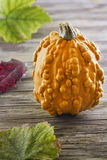Pumpkin on wooden table Stock Images