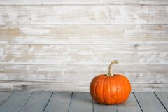 Pumpkin on wooden wall background stock image