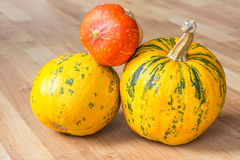 Pumpkin on a wooden weathered floor. Image of pumpkin sitting on a wooden floor Stock Image