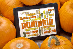 Pumpkin word cloud Stock Photos