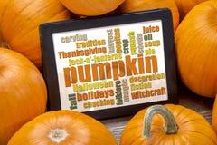 Pumpkin word cloud Stock Photos