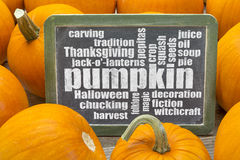 Pumpkin word cloud Royalty Free Stock Photography