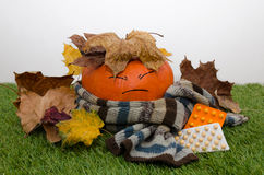 Pumpkin wrapped in a scarf and drugs. Pumpkin wrapped in a scarf is covered with leaves and lie next to pills stock images
