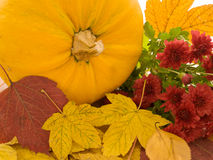 Pumpkin and yellow leaves Stock Photo