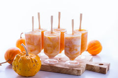 Pumpkin yogurt freeze Royalty Free Stock Photography