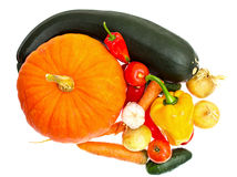 Pumpkin, zucchini, carrots, peppers, tomatoes Royalty Free Stock Photo
