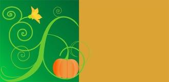 Pumpkinbloom Vektor Abbildung