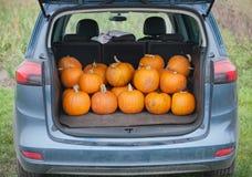 PumpkinCar Stock Image