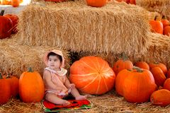 Pumpking baby2. A baby girl sitting pretty in a pumpkin field Stock Photography