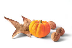 Pumpking decoration. Pumpking with wallnuts Stock Photos