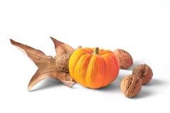 pumpking dekoracji Zdjęcia Stock