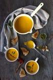 Pumpking soup. Stock Image