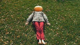 Pumpkinhead die op gazon liggen stock video