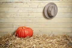 Pumpkinn牛仔帽在一个老谷仓 图库摄影