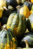 Pumpkins. Many colored pumpkins on the flower exhibition.Kijiv.Ukraine Royalty Free Stock Photo