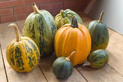 Pumpkins. Different in colour and the size royalty free stock image