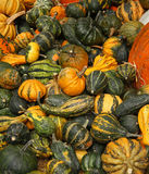 Pumpkins. On bavarian thanksgiving market Royalty Free Stock Photos