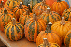 Pumpkins. On bavarian thanksgiving market Royalty Free Stock Photo