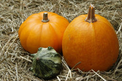 Pumpkins. Orange and green pumpkins on straw Royalty Free Stock Photography