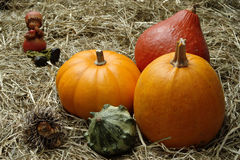 Pumpkins. With elf and hedgehog on straw Royalty Free Stock Photography