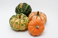 Pumpkins. Four pumpkins on white background Royalty Free Stock Photography