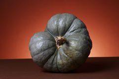 Pumpkins Stock Photography