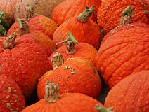 Pumpkins. On bavarian thanksgiving market Royalty Free Stock Image