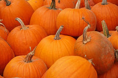 Pumpkins. On bavarian thanksgiving market Royalty Free Stock Images
