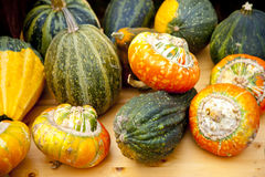 Pumpkins. On a farmers market Royalty Free Stock Images