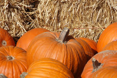 Pumpkins. With bales of hay background Royalty Free Stock Photography