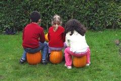 Pumpkins. 3 children siting on pumpkins Royalty Free Stock Images