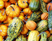 Pumpkins. The picture shows a pile of pumpkins seen at the market. It is a colorfull mix of green, orange, and yellow ones. The pumpkins were mostly sold for royalty free stock photos